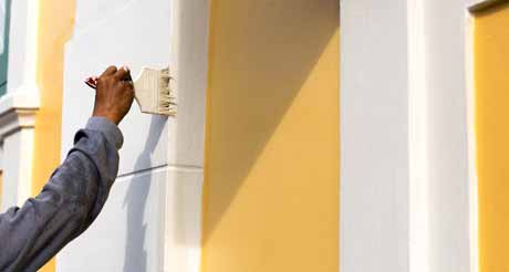 Trim Any Plants and Trees Before The Exterior Paint
